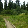 The clear walking paths at Shafer Butte.- Shafer Butte and Mores Mountain Trailhead