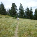 The trail system is accessible for all ages.- Shafer Butte and Mores Mountain Trailhead