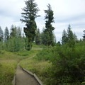 Hiking trails at Shafer Butte.- Shafer Butte and Mores Mountain Trailhead