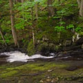 A small slide waterfall. Note the moss on the rocks; this makes them extremely slippery.- East Jimmy Creek Falls