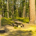 The campground is heavily wooded.- Seeley Lake Campground