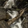 Holland Falls.- Holland Falls Hike