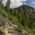The trail to Holland Falls has a bit of a climb at the end.- Holland Falls Hike