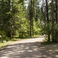 Typical campground road.- Holland Lake Campground