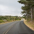 Driving on Limantour Road near Point Reyes Hostel.- Point Reyes Hostel