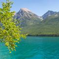 Beautiful scenery everywhere you look.- Bowman Lake Paddle