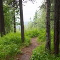 Short trail to the viewpoint.- Southview Provincial Recreation Area