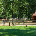 Horse stables.- Chickasaw State Park