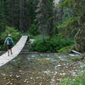 Swinging bridge across Reynolds Creek.- Florence Falls