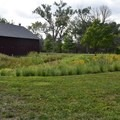 Open pastures at Ulysses S. Grant National Historic Site.- Ulysses S. Grant National Historic Site
