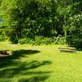A typical inland site.- Westcott Beach Campground