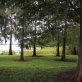 A shady area for play or a picnic.- Bill Frederick Park + Campground at Turkey Lake