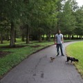 Dogs allowed, with restrictions- Bill Frederick Park + Campground at Turkey Lake