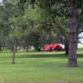 Spacious tent site.- Bill Frederick Park + Campground at Turkey Lake