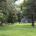 The tent area has plenty of room for outdoor games.- Bill Frederick Park + Campground at Turkey Lake