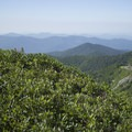 View from the overlook.- Pinnacle Hike at Craggy Gardens