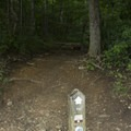 The start of the trail.- Skinny Dip Falls
