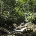 Rock hopping above the falls.- Skinny Dip Falls