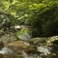 Looking downstream toward Skinny Dip Falls.- Skinny Dip Falls