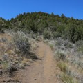 Though short, the trail up the butte is a moderate climb up 450 feet in elevation gain.- Schonchin Butte