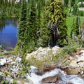 Subalpine pond en route to Echo Lake.- Echo Lake and Traverse Lake