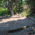 Typical site at Gunsight Lake backcountry camp.- Gunsight Pass Trail
