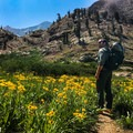 If attempting this trail in the summer, wildflowers abound, and the smell is incredible!- Franklin Lake