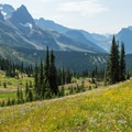 View along Highline Trail toward Logan Pass.- Swiftcurrent Lookout