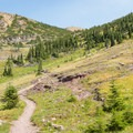 Climbing to Swiftcurrent Pass from Granite Chalet.- Swiftcurrent Lookout
