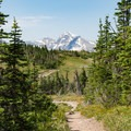 Looking back down the trail at Heaven's Peak.- Swiftcurrent Lookout