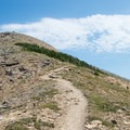 Climbing Swiftcurrent Mountain.- Swiftcurrent Lookout