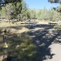 Typical campsite at South Steens Campground.- South Steens Campground