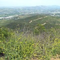 The view to the north looking back at the trail.- Cowles Mountain via Big Rock Trail