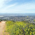 View of Santee to the northeast.- Cowles Mountain via Big Rock Trail