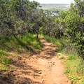 View of the path as it descends back to the trailhead.- Cowles Mountain via Big Rock Trail