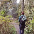 Hiking the access trail to Mount Baker Hot Springs.- Mount Baker Hot Springs