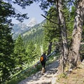 The trail starts to gain some elevation.- Garnet Canyon Trail to Cleft Falls
