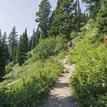 You'll encounter several switchbacks loaded with wildflowers in the spring and summer.- Garnet Canyon Trail to Cleft Falls