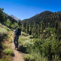Enjoy the Mineral King valley as you hike toward Farewell Gap.- Florence Peak