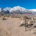 The desert rainshadow behind the Sierra Nevada at Tuttle Creek Campground.- Tuttle Creek Campground