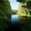 The channel leading to Rollins Pond.- Fish Creek Pond State Park