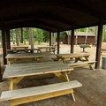 Picnic shelters in the day use area.- Fish Creek Pond State Park