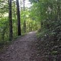 The 1.5-mile trail.- Ozark National Scenic Riverway Alley Spring + Mill