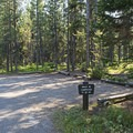 Lizard Creek Campground.- Lizard Creek Campground