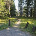 A path down to the beach, which is south of the boat launch.- Lizard Creek Campground