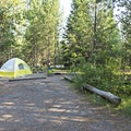 A typical campsite at Lizard Creek Campground.- Lizard Creek Campground
