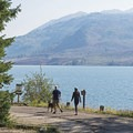 Taking a stroll along Jackson Lake on the campground road.- Lizard Creek Campground