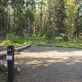 A typical site at Lizard Creek Campground.- Lizard Creek Campground