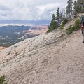 Sandstone becomes wet and slippery when wet; be careful.- Spectra Point Trail