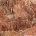 Looking down into the canyons. So many spires and hoodoos!- Spectra Point Trail